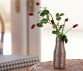 Как правильно срезать и сохранить цветы