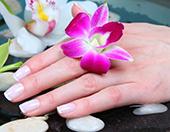 Нежность женских рук - как правильно ухаживать за кожей? Советы и рекоменда ...