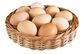 Как проверить свежесть яиц?
