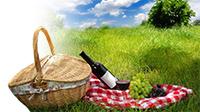 Что приготовить на пикник?